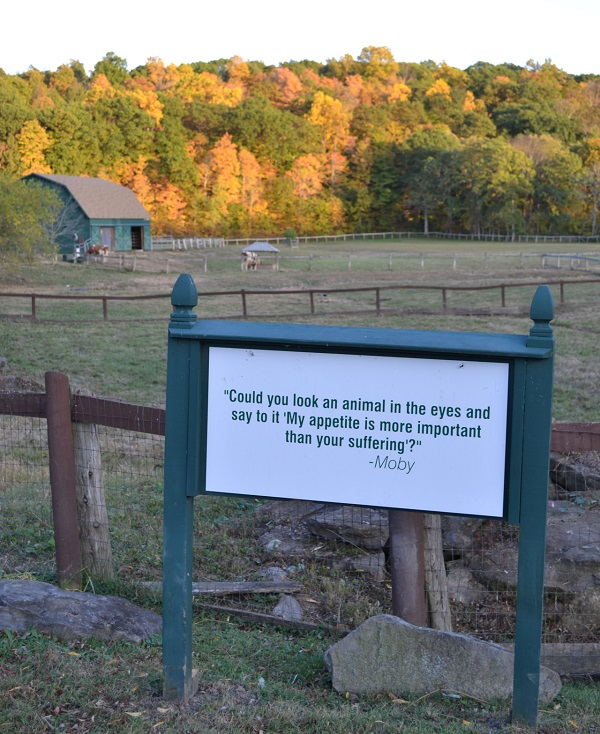One of various signs with quotes on them displayed around Catskill Animal Sanctuary.